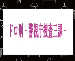 ドロ刑 -警視庁捜査三課-ドラマ