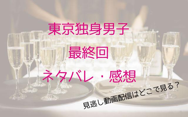 東京独身男子最回ネ、ネタバレ